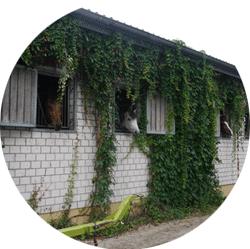 Reiterhof Quado Pensionsstall